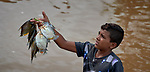 A boy peddles his catch of fish at the dock in Santarem, a city alongside the Amazon River in Brazil's northern Para state.