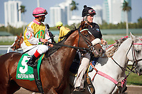 Grace Hall with jockey Javier Castellano up on post parade for the Gulfstream Oaks. Gulfstream Park Hallandale Beach Florida. 03-31-2012. Arron Haggart/Eclipse Sportswire