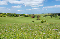 Linncolnshire Wolds landscape - May