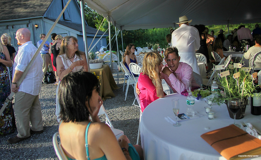 Charlie Bethel, facing center, of Los Angeles with friend Elise Barry of San Francisco at his mom's novelist and writer Joyce Maynard wedding reception in Harrisville, N.H., Saturday, July 6, 2013.  (Cheryl Senter for the New York Times)