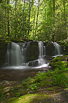 Waterfalls, Great Smoky Mountains National Park