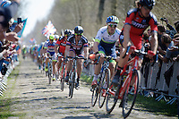 John Degenkolb (DEU/Giant-Alpecin) in sector 18: Trou&eacute;e d'Arenberg - Wallers Forest (2.4km)<br /> <br /> 113th Paris-Roubaix 2015
