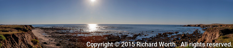 A south to north, 180 degree, pano of a northern section of California's Año Nuevo State Reserve, late on New Year's Day -2015.