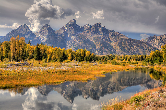 THE GRAND TETONS STAND OUT AMONGST THE COLOR OF A FALL FOILAGE IN GRAND TETON NATIONAL PARK,WYOMING