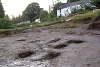 SAVEOCK WATER, CORNWALL, ENGLAND - AUGUST 03: A general view of votive pits and Field School in background on August 3, 2008 in Saveock Water, Cornwall, England. The excavations here are led by archaeologist Jacqui Wood. (Photo by Manuel Cohen)