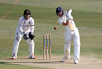 Jordan Cox hits out for Kent during Kent CCC vs Sussex CCC, Bob Willis Trophy Cricket at The Spitfire Ground on 9th August 2020