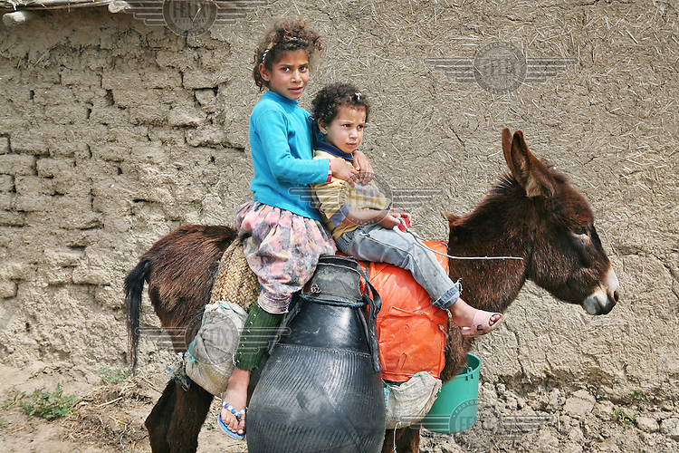 Girls use their donkey to carry water back to their village of Tlaha from the river Sebou. The water is too polluted to be used for drinking water, as sewage from villages and towns is washed upriver, but is used by villagers for irrigation, cleaning and livestock...