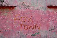 Maldives, Fenfushi Island, Fox Town graffiti on the wall,
