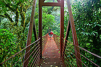 Tourist on one of the forest Canopy Suspension Bridges, Monteverde Cloud Forest Biological Reserve, Costa Rica. Model Released