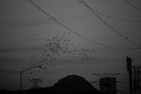 Torres y cables de la CFE que abastecen la ciudad de energ&iacute;a el&eacute;ctrica <br /> &copy; Foto: LuisGutierrez/NORTEPHOTO.COM