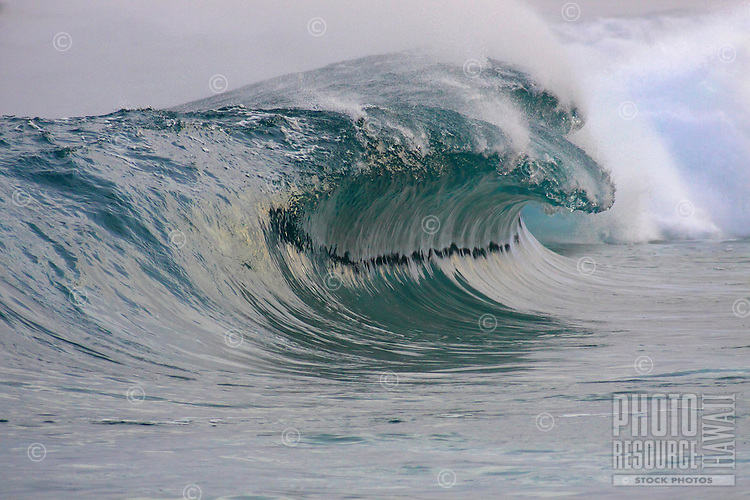 A big, glassy thick wave breaks on the North Shore of O'ahu.