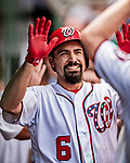 1 August 2018: Washington Nationals third baseman Anthony Rendon returns to the dugout after scoring against the New York Mets at Nationals Park in Washington, DC. The Nationals defeated the Mets 5-3 to sweep the 2-game weekday series. Mandatory Credit: Ed Wolfstein Photo *** RAW (NEF) Image File Available ***