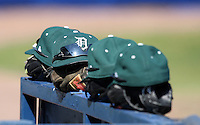 March 23, 2010:  Dartmouth Big Green during a game at the Chain of Lakes Stadium in Winter Haven, FL.  Photo By Mike Janes/Four Seam Images