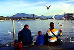A young family feeds the seagulls on the shore of Lake Lucerne.