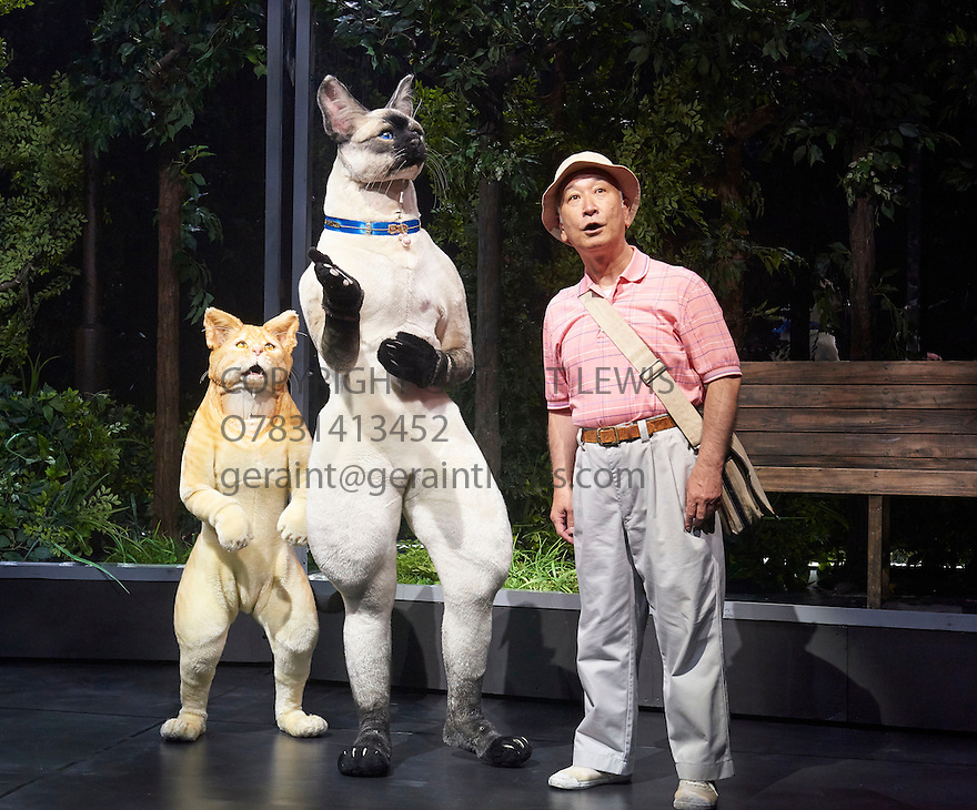 Kafka on the Shore. Based on the work by Hauki Murakami,adapted for the stage by Frank Galati. A Ninagawa Company Production directed by Yukio Ninagawa With Katsumi Kiba as Nakata. Opens at The Barbican Theatre  on 28/5/15. CREDIT Geraint Lewis