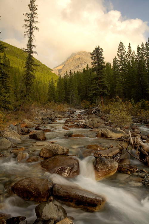 Silverhorn Creek and Mount Weed along Icefields Parkway, Banff NP