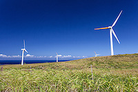 Windmills in a grassy field with the ocean in the distance, North Kohala, Big Island.