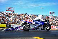 Sept. 25, 2011; Ennis, TX, USA: NHRA pro stock motorcycle rider Hector Arana Jr during the Fall Nationals at the Texas Motorplex. Mandatory Credit: Mark J. Rebilas-