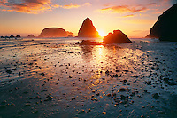 Whalehead Creek<br />