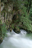 Grutas de Lanquin caves, Alta Verapaz, Guatemala.