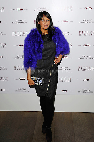 LONDON, ENGLAND - FEBRUARY 20:  Jackie St Clair attending 'Bitter Harvest' Gala Screening at The Ham Yard Hotel on February 20, 2017 in London, England.<br /> CAP/MAR<br /> &copy;MAR/Capital Pictures /MediaPunch ***NORTH AND SOUTH AMERICAS ONLY***