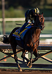 OCT 28: Breeders' Cup Classic entrant McKinzie, trained by Bob Baffert, works at Santa Anita Park in Arcadia, California on Oct 28, 2019. Evers/Eclipse Sportswire/Breeders' Cup