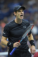 FLUSHING NY- SEPTEMBER 05: Andy Murray reacts after he wins his match. Andy Murray Vs Grigor on Arthur Ashe Stadium at the USTA Billie Jean King National Tennis Center on September 5, 2016 in Flushing Queens. Credit: mpi04/MediaPunch