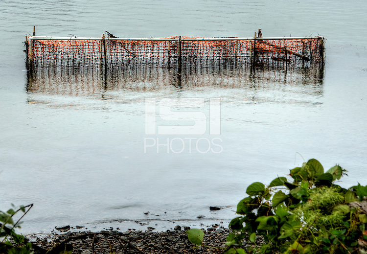 Washington D.C. - October 1, 2016: What looks like a sunken soccer goal, fish shoal in the Anacostia. Buzzards Point area in Southwest Washington D.C. cleared for construction of the new soccer stadium for D.C. United scheduled to open in 2018.