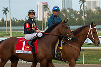HALLANDALE BEACH, FL  JANUARY 27: #1 Singing Bullet, ridden by Robby Alvarado, in the post parade of the Pegasus World Cup Invitational, at Gulfstream Park Race Track on January 27, 2018,  in Hallandale Beach, Florida. (Photo by Casey Phillips/ Eclipse Sportswire/ Getty Images)