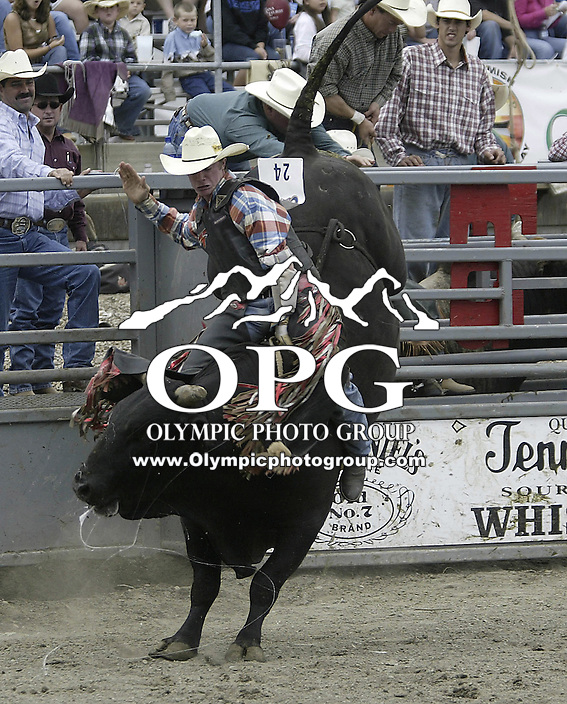 29 August 2004:  Bull Rider Calssidy Mathews riding the bull Fire Ball during the PRCA 2004 Extreme Bulls competition in Bremerton, WA.