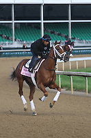 May 1, 2014: My Miss Sophie gallops in preparation for the Kentucky Oaks at Churchill Downs in Louisville, KY. Zoe Metz/ESW/CSM