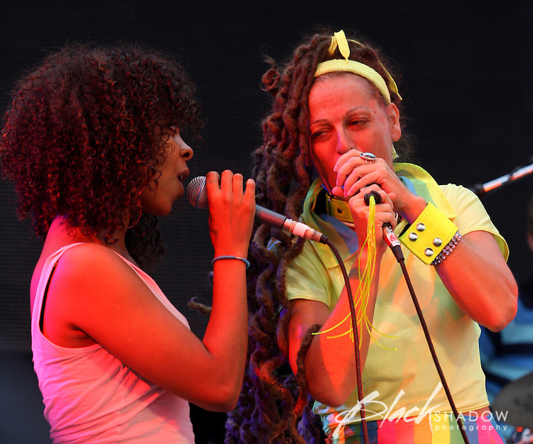 The Slits performing at the 2007 Golden Plains Festival