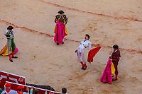 europe,spain,navarra,Pamplona,matador Andrés Roca Rey, the bullfighter , rejoices at the death of the bull