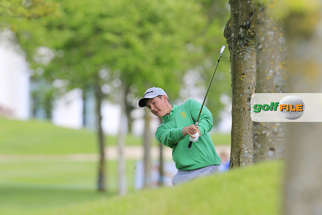 John Ross Galbraith (AM)(IRL) plays his 2nd shot from the trees on the 11th hole during Thursday's Round 1 of the 2016 Dubai Duty Free Irish Open hosted by Rory Foundation held at the K Club, Straffan, Co.Kildare, Ireland. 19th May 2016.<br /> Picture: Eoin Clarke | Golffile<br /> <br /> <br /> All photos usage must carry mandatory copyright credit (&copy; Golffile | Eoin Clarke)