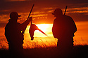 00890-036.12 Ring-necked Pheasant hunters are silhouetted against a low sun as they admire a bagged rooster. Hunt, magic hour, sunset.
