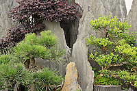 Bao's family garden, Huangshan, China.  Formerly the largest private garden in China.  Noted for many bonsai trees.