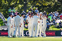 England celebrates the wicket of BJ Watling of the Black Caps during Day 3 of the Second International Cricket Test match, New Zealand V England, Hagley Oval, Christchurch, New Zealand, 1st April 2018.Copyright photo: John Davidson / www.photosport.nz