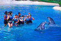 Sea Life Park's Dolphin Encounters offers tourists the unique opportunity to closely interact with the parks resident Bottlenose dolphins.
