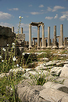 Perge an ancient Greek site on the Aegean coast, Turkey