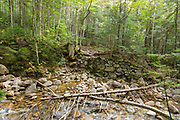 Old trestle abutment at the Redrock Brook crossing along the Franconia Branch (today's Franconia Brook Trail) of the old East Branch & Lincoln Railroad (1893-1948) in the Pemigewasset Wilderness of New Hampshire. Tropical Storm Irene damaged this abutment in 2011, and half of the stone work washed away.