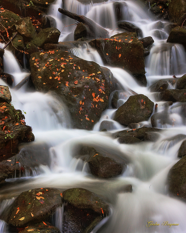 Water tumbles over leaf-covered boulders in a Smokies stream. Smoky Mountain photos by Gordon and Jan Brugman.