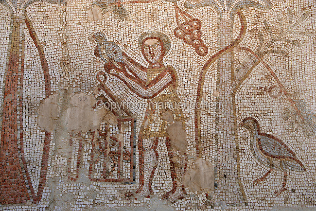 Roman mosaic of man with caged birds, Citadel Museum, Bosra, Syria Picture by Manuel Cohen