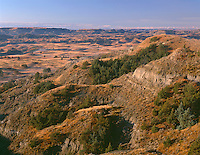 NDTR_126 - USA, North Dakota, Theodore Roosevelt National Park, Autumn colored grassland and sedimentary hills, view south from Boicourt Overlook, South Unit.