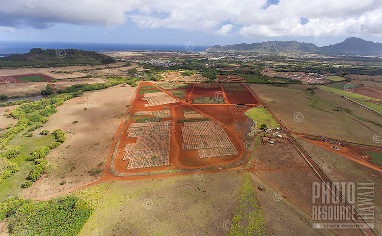 An aerial view of farmland near Hanama'ulu, Kaua'i