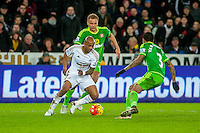 Andre Ayew of Swansea in action during the Barclays Premier League match between Swansea City and Sunderland played at the Liberty Stadium, Swansea  on  January the 13th 2016
