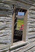 Photographer at Bressman Cabin. Ruby Lake National Wildlife Refuge, Nevada