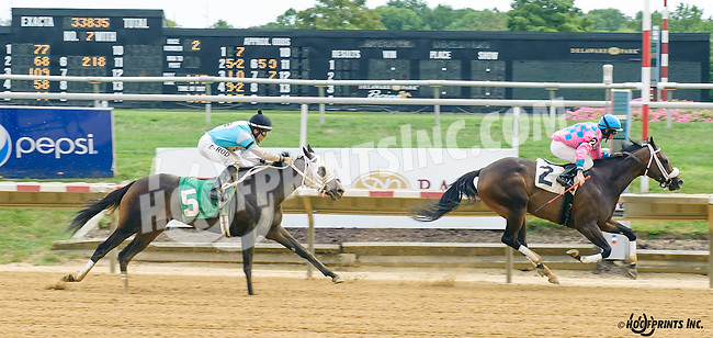 Silver Truffle winning at Delaware Park on 9/5/16
