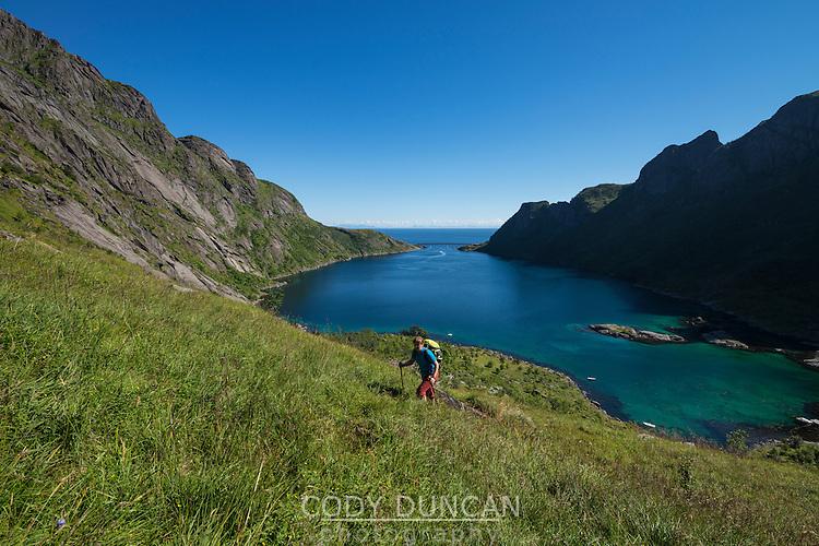 Female hiker ascending grassy hillside above Djupfjord on way to Veinestind, Moskenesøy, Lofoten Islands, Norway
