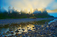 New Zealand - South Island - West Coast, Fox Glacier, Lake Matheson and Westland National Park