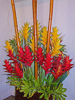 A flower arrangement of red and yellow lobster claw heliconia and bamboo, Hawai'i.